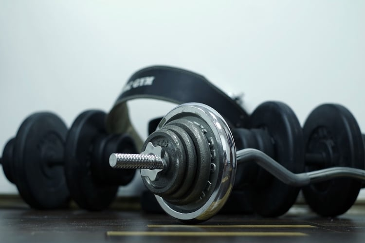 Barbells for Bicep Curls