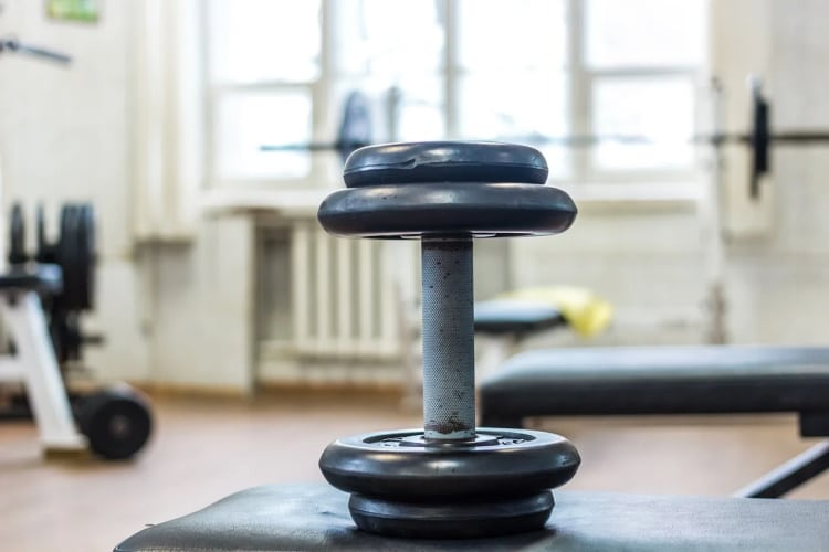 Dumbbell Sitting on a Bench