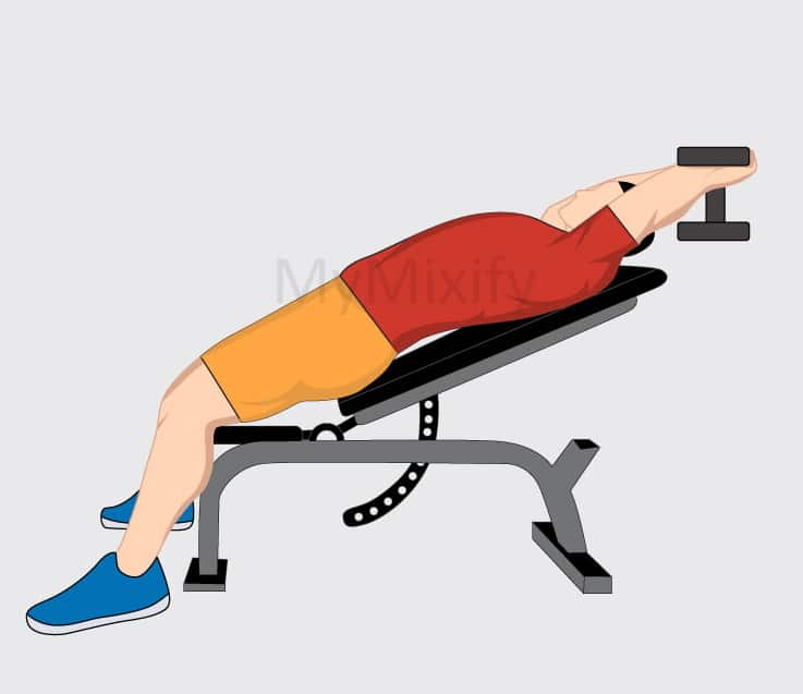 Incline Dumbbell Stretched Position